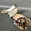 Thumbnail: Chickadee on driftwood (#1)