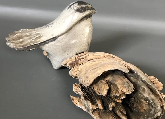 Chickadee on driftwood (#1)