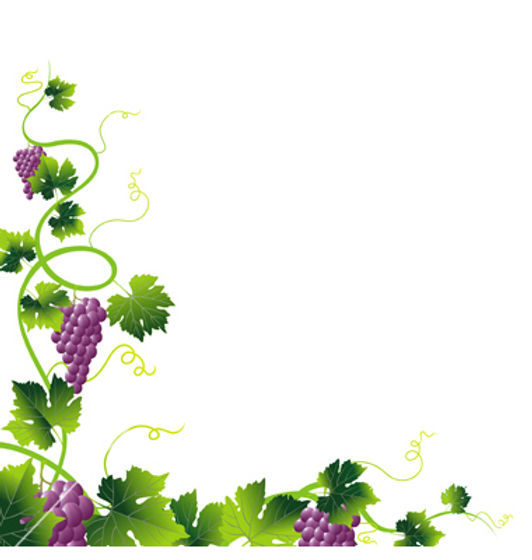 clip art 2 grapevine.jpg