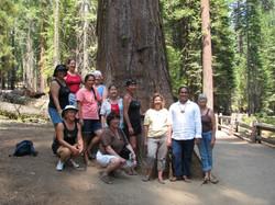 Yosemite with Kumu Keala Ching and Na Wai Iwi Ola