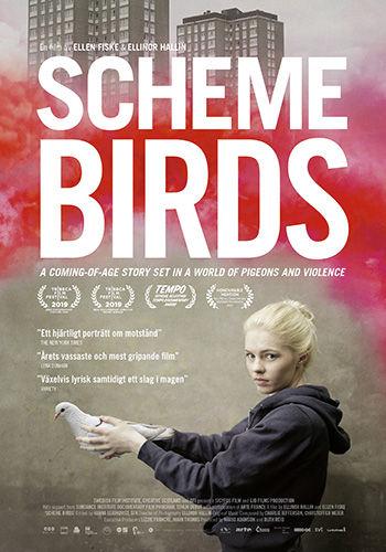 Scheme-Birds-poster-web.jpg