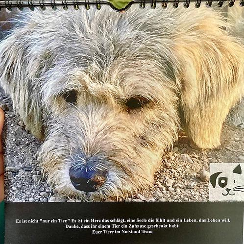 Kalender Hunde