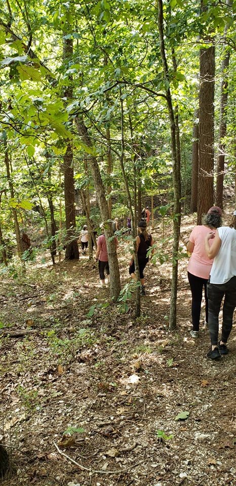 Forest bathing with Jill Anderson