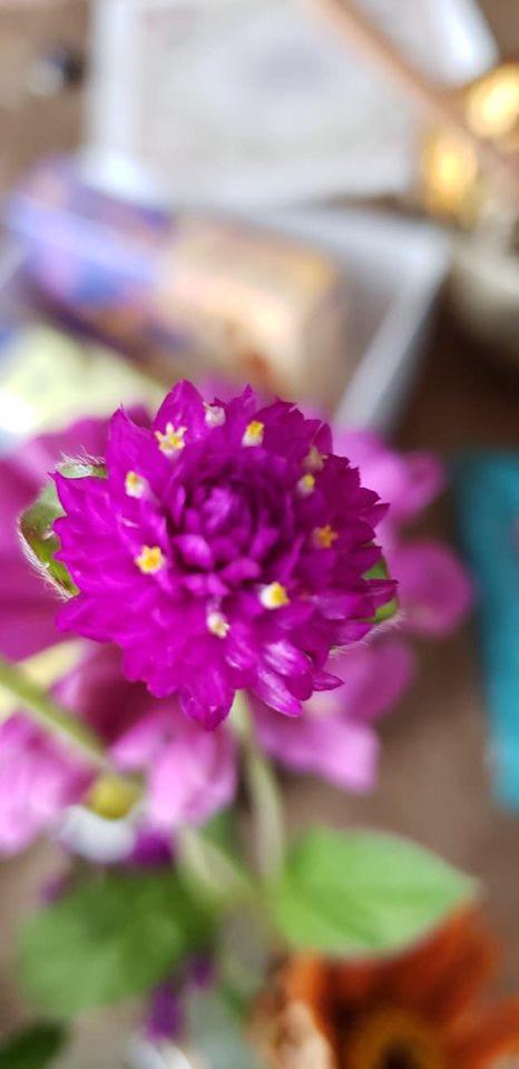 Retreat flowers