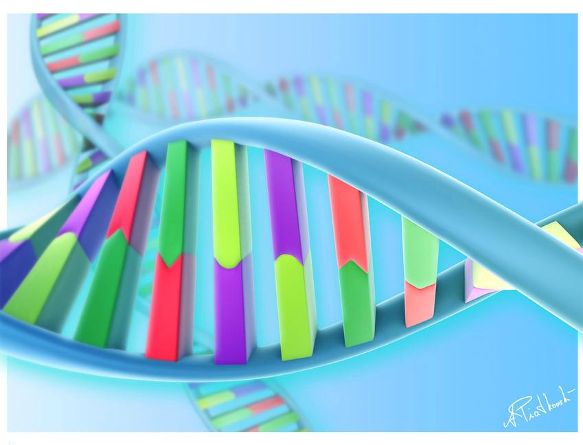DNA - designidentity