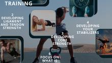 7 Principles to Training