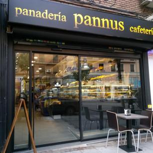 puerta automatica Pannus
