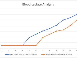 What is Blood Lactate in Running?