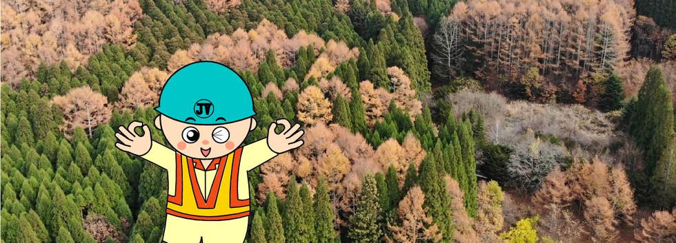 11月 紅葉の美しい季節を迎えました。