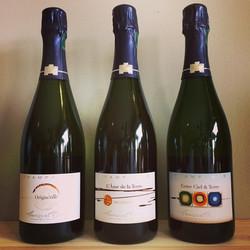 Champagne Bedel