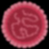 ilustra-virus.png