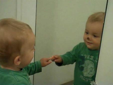 Esse no espelho sou eu? Quando a consciência-de-si emerge