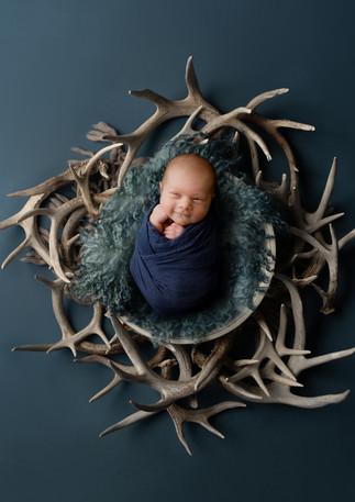 James-antlers.jpg