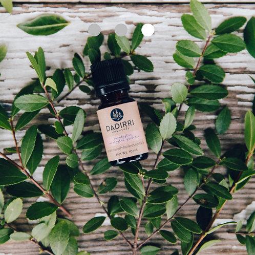 Eucalyptus | Essential Oil