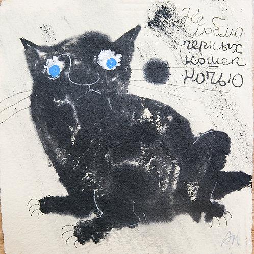 Не люблю черных кошек ночью