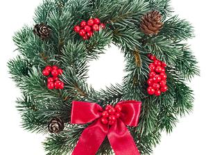 ★12月7日(木) いけとおがわ 親子広場いちご クリスマス会