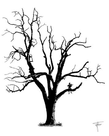 Baum Urs