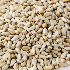 Sunflower Seed3.png