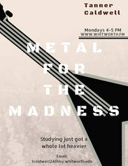 Metal for the madness poster.jpg