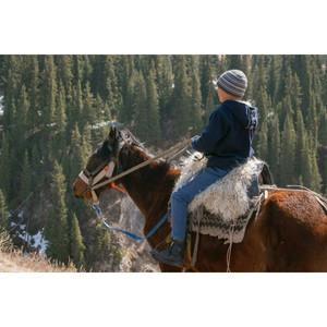 ספקטי דאדי | ספקטי דדי | מה שעוזר לנו | רכיבה על סוסים