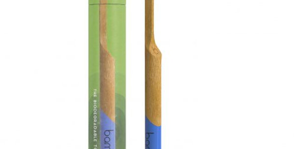 Bamboo Toothbrush Medium Bristle – Forest Green / Sea Blue