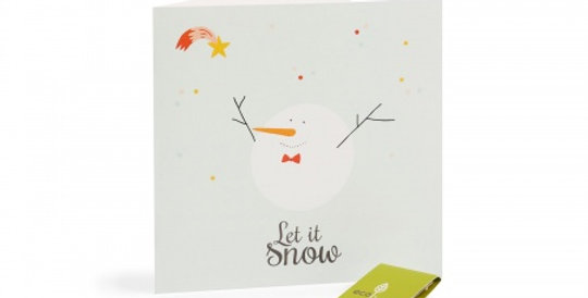 10 Recycled Christmas Cards - Cute Animal Cards (FSC 100%) with seeds