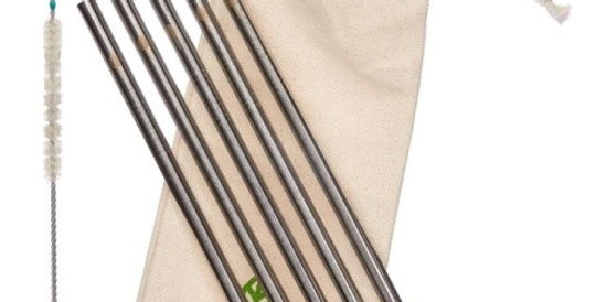 5 Stainless Steel Smoothie Straight Drinking Straws with Plastic-Free Cleaning B