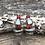 Thumbnail: Pheasant & Prairie Chicken (Coral)