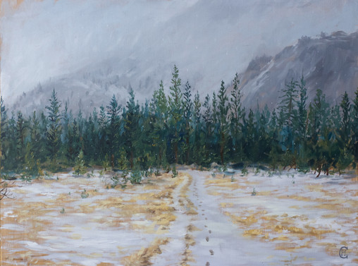 Snow In Yosemite - Limmited Edition Print - Chapman Hamborg Art