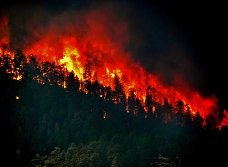 Wildfires Rage Through Western U.S