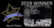 2019 SLGT WINNER - MAC317 PFEFFER.png