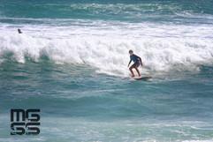 surf reto103.jpg