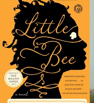 Review of 'Little Bee'