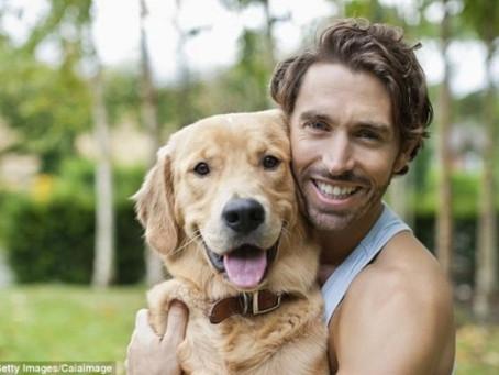 犬と人間 一万年の相棒