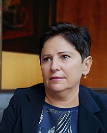 Diane Mehri-Voisine