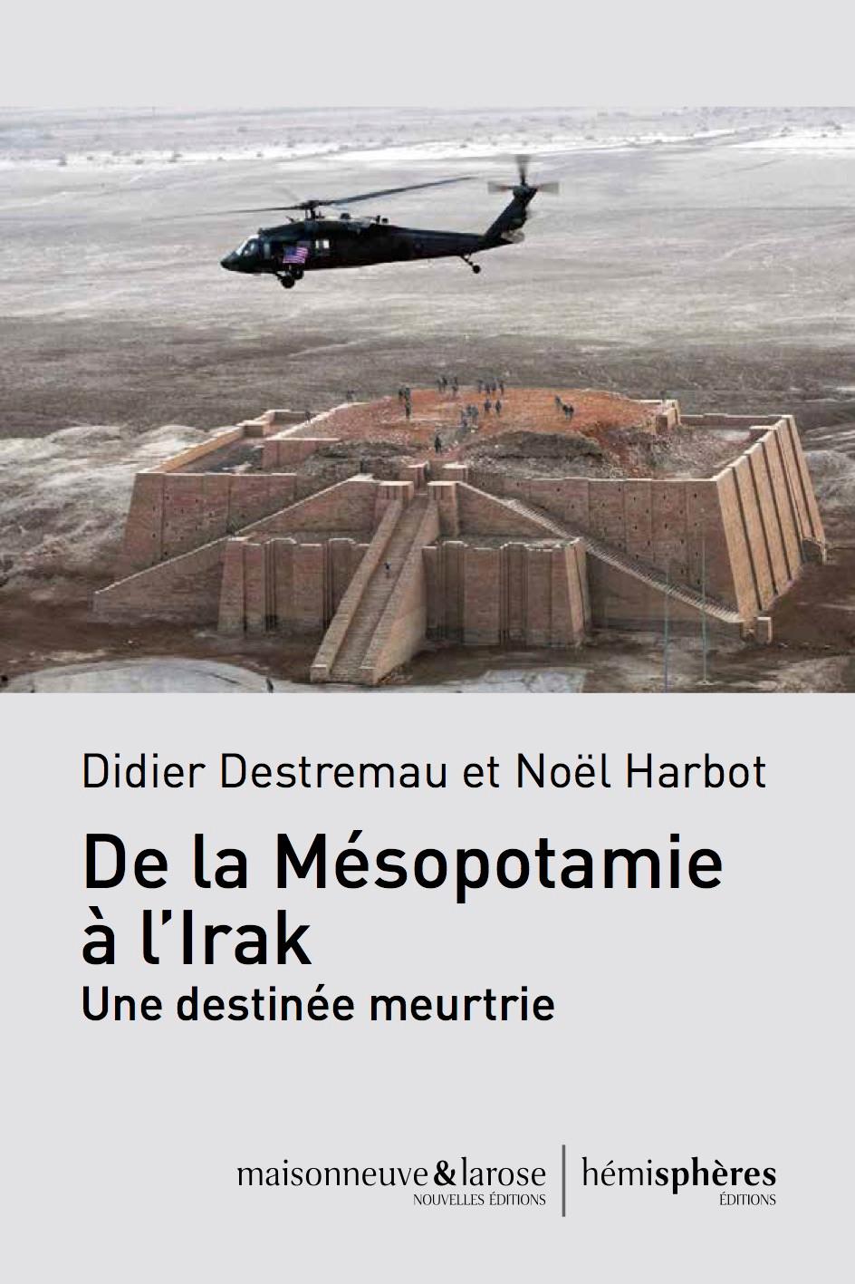 Le Pape et l'Irak, Didier Destremau
