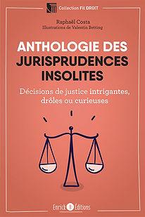 Anthologies des jurisprudences insolites