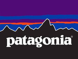 Patagonia: una empresa sustentable y socialmente responsable