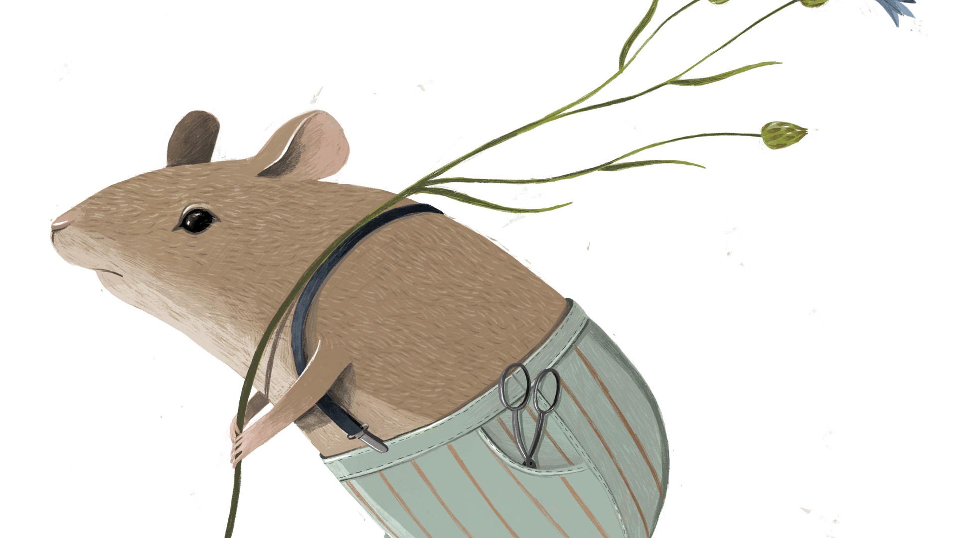 Johanna_Hager_Illustration (18).jpg