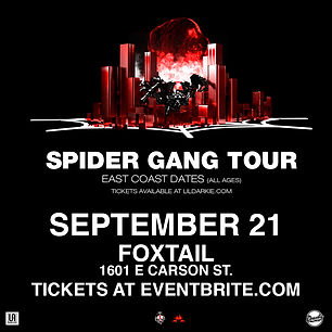 SpiderGang-IG.jpg