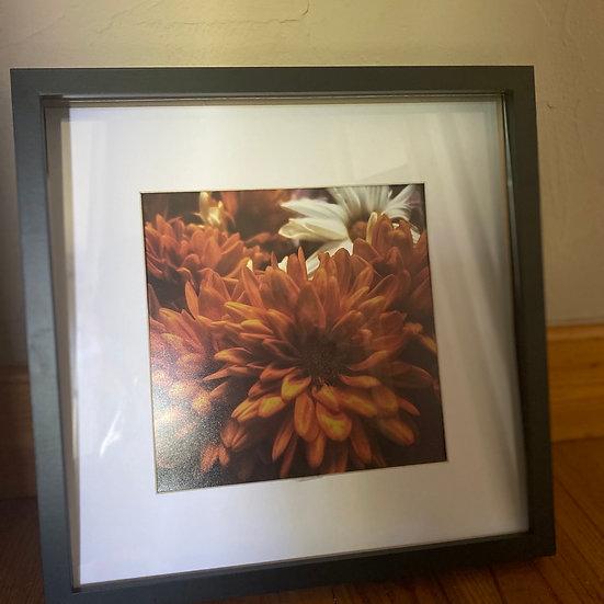 Cemetary flowers n°2. 20x20 /cadre 30x30 Ref33