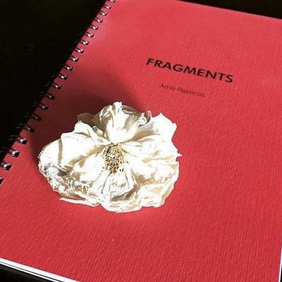 Fragments. Carnet de photos.