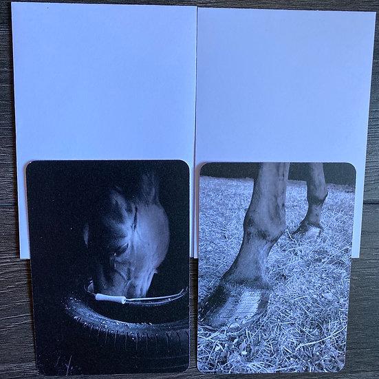 Lot de 2 cartes Sabre + enveloppes