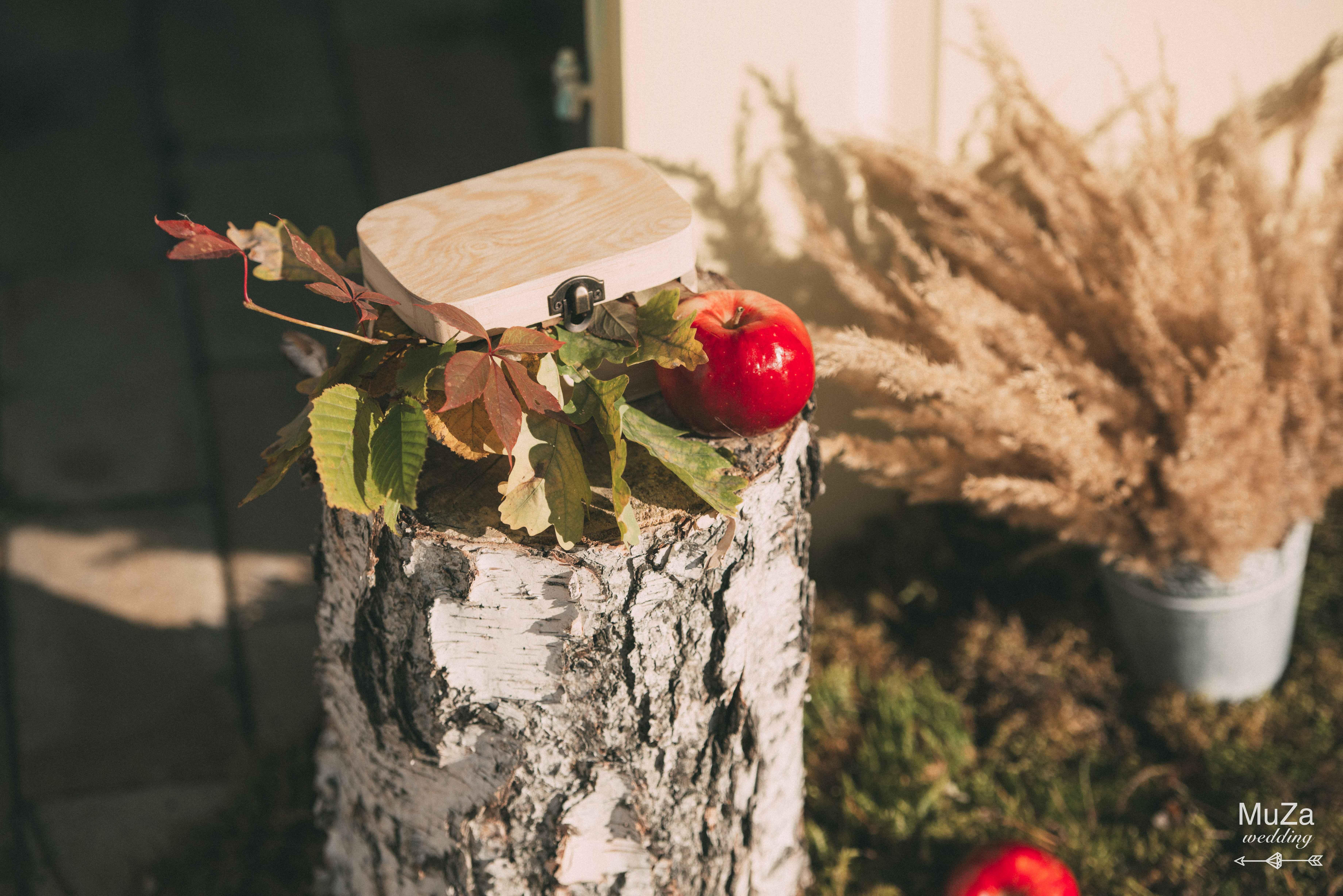 деревянный сундучок с кольцами