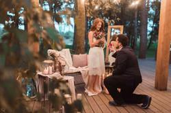 романтическое предложение proposal