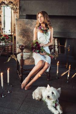 утро невесты, фотосессия, собака