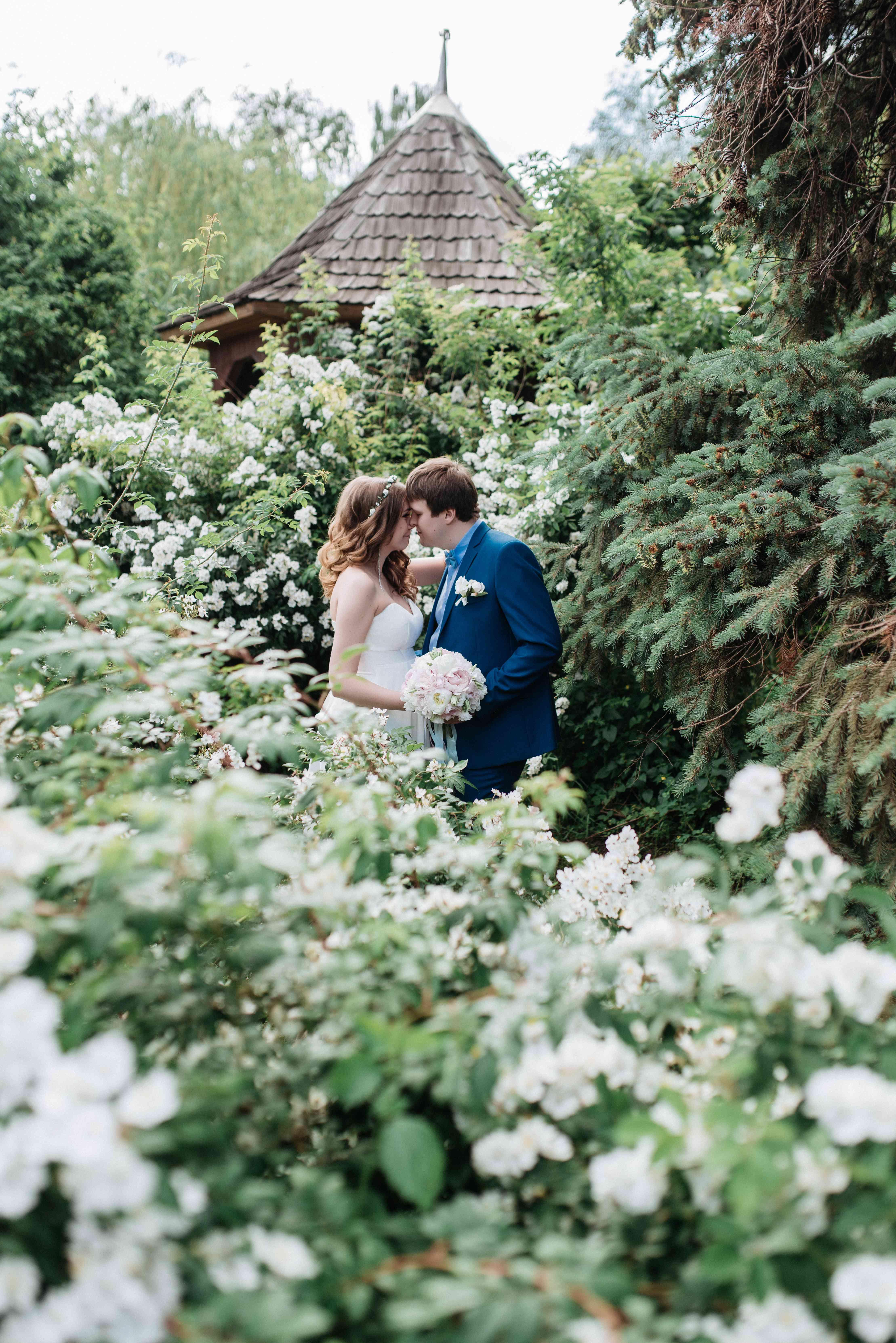 любовь, море цветов, романтика