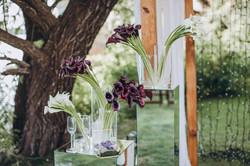 зона вечерней свадебной церемонии
