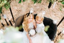 две невесты, свадебный торт