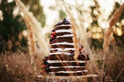 свадебный торт, голый, шоколадный